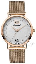 Ingersoll Union Biały/Stal w kolorze różowego złota Ø36 mm